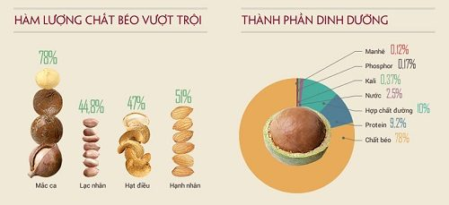 Giá trị dinh dưỡng của hạt điều rất tốt đối với sức khỏe con người