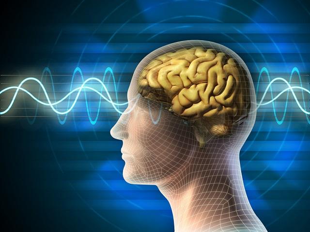 Hạnh nhân giúp não bộ khỏe mạnh