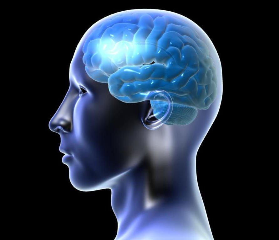 Quả hồ đào giúp cải thiện trí não